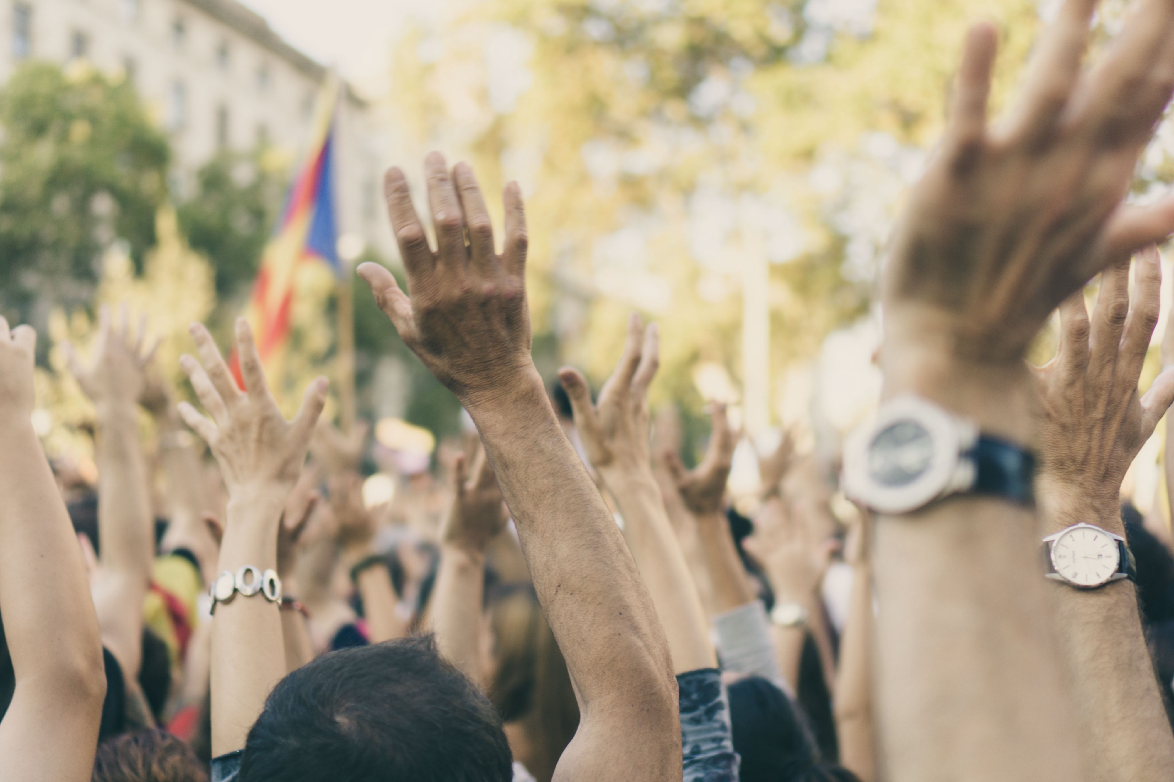 A crowd of people raising their hands in solidarity